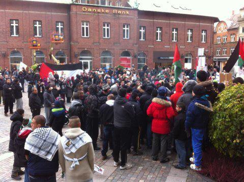 Manifestation au Danemark (Odense) contre l'agression israélienne à Gaza - 18/11/12